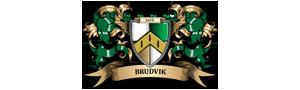 Familien Brudvik